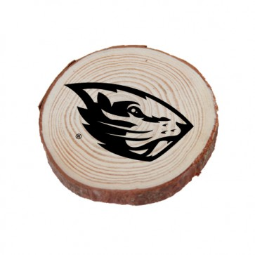 #2378 Large Zion Wood Magnet
